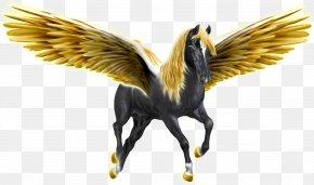 Pegasus - Beak Horse Fauna Feather Wing PNG