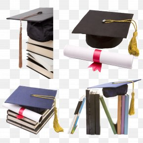 Graduation Season Material - Diploma Academic Degree Course Graduation Ceremony Master's Degree PNG