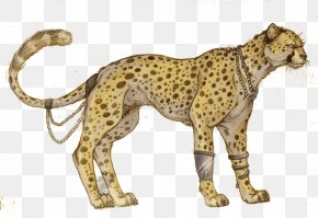 Cheetah Picture - Cheetah Felidae Tiger Cat Lion PNG