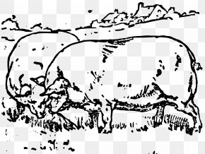 Fat Pig - Domestic Pig Sheep Cattle Clip Art PNG