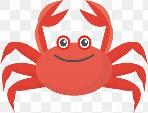 Red Crab Vector - Crab Colorful Run Euclidean Vector Illustration PNG