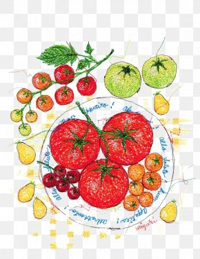 Watercolor Tomato - Tomato Watercolor Painting Illustrator Illustration PNG