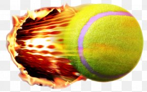 Tennis Ball - Tennis Ball PNG