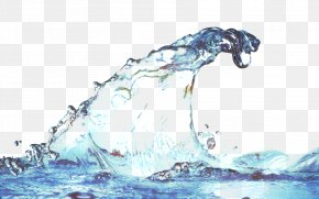 Pointer Drinking Water - Cartoon Cloud PNG