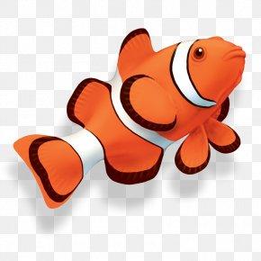 Cuttlefish Clip Art - Clip Art Clownfish Openclipart Vector Graphics PNG