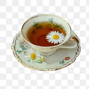 Exquisite Chrysanthemum Tea - Green Tea Drink Herbal Tea PNG