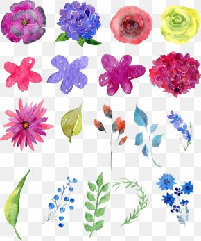 Watercolor Flowers - Floral Design Watercolor Painting Drawing PNG