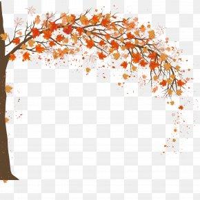 Autumn Maple Background Design - Autumn Adobe Illustrator PNG