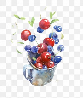 Blueberry And Cherry Fruit - Watercolor Painting Drawing Illustration PNG