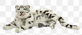Snow Leopard - Snow Leopard Tiger Felidae Whiskers PNG