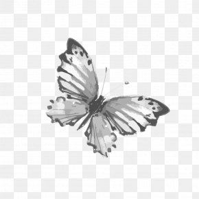Ink Butterfly Fly Net - Butterfly Watercolor Painting PNG