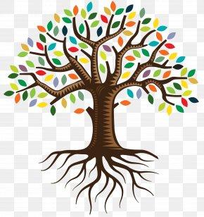 Family Tree - Root QC Family Tree Logo Clip Art PNG