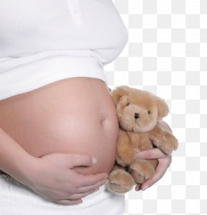 Pregnant Woman,belly,pregnancy,Mother,Pregnant Mother - Pregnancy Abdomen Stock Photography Mother Infant PNG