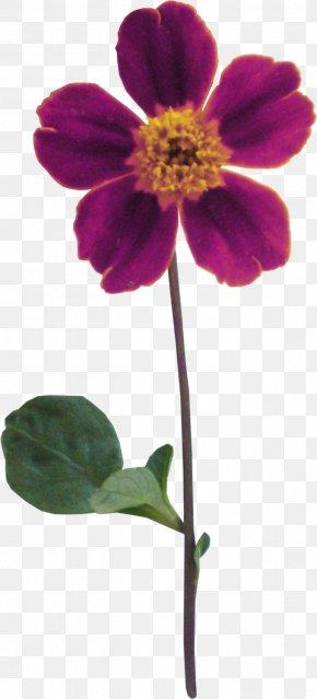 Flower Bouquet - Flower Bouquet Nosegay Headband PNG