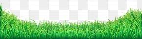 Grass Transparent Clip Art Image - Lawn Clip Art PNG