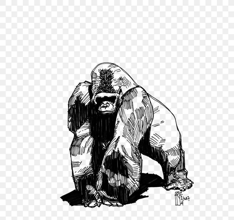 Western Gorilla Tattoo Phaeleh @ Gorilla Drawing Groovanometry, PNG, 564x772px, Western Lowland Gorilla, Ape, Art, Black And White, Chimpanzee Download Free
