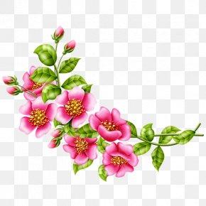 Flower - Floral Design Flower Garden Roses Clip Art PNG
