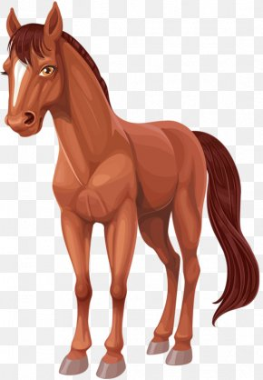 Cartoon Horse - Horse Cartoon Clip Art PNG