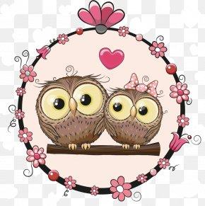 Cartoon Animals Vector Material Couple - Owl Cartoon Illustration PNG