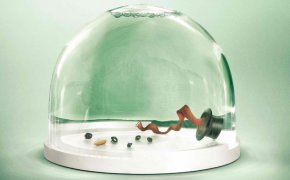 Get Snow Globe Pictures - Greenpeace Snow Globes Advertising TBWA Worldwide Global Warming PNG