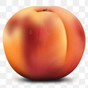 Peach Cliparts - Peach ICO Fruit Icon PNG