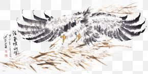 Eagle Traditional Decorative Ink Painting - U6c34u58a8u753bu9e70 Ink Wash Painting PNG