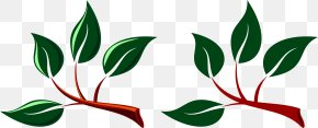 Branch Leaves Cliparts - Branch Leaf Clip Art PNG