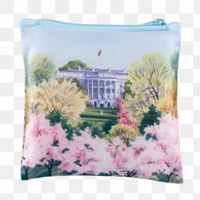 Cherry Blossom Watercolor - White House Tidal Basin Cherry Blossom PNG