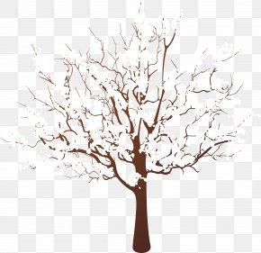 Tree Branch - Tree Stump Branch Winter Wood PNG