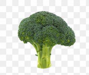 Broccoli Image - Broccoli Vegetable Cauliflower PNG