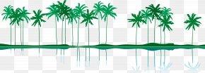 Summer Coconut Tree Island Vector - Euclidean Vector Illustration PNG