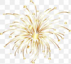Vector Golden Fireworks - Fireworks Euclidean Vector PNG
