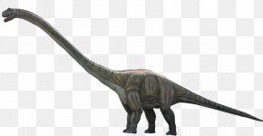 Dinosaur - Dinosaur Alamosaurus Velociraptor PNG