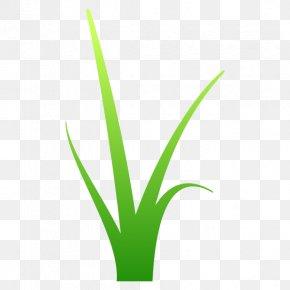 Leaf Grasses Plant Stem Line Font PNG