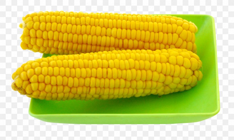 Corn On The Cob Maize Diabetes Mellitus Vegetable Food, PNG, 1505x903px, Corn On The Cob, Baby Corn, Carbohydrate, Commodity, Corn Kernel Download Free