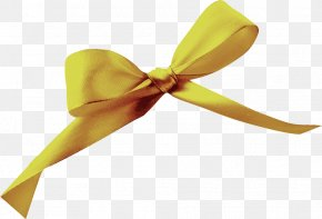 Bow - Download Ribbon Shoelace Knot Icon PNG