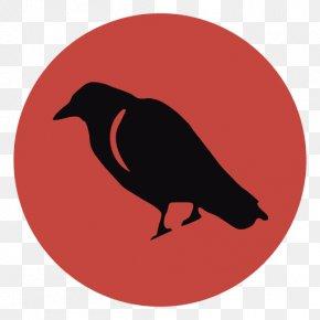 Bird - Bird Common Raven Crow Drawing PNG