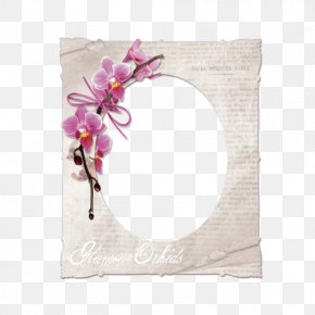 Flower - Paper Picture Frames Floral Design Flower Label PNG
