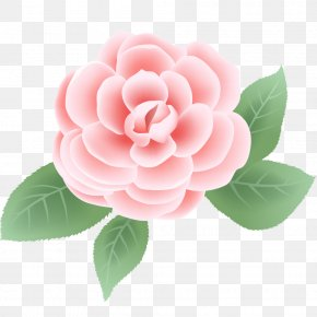 Pink Larkspur Flower - Floral Design Rose Flower Vector Graphics Clip Art PNG