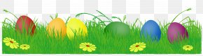 Easter Eggs With Grass Clipart Picture - Easter Bunny Easter Egg Egg Hunt Clip Art PNG