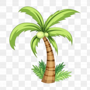 Palm Tree Hand Painted Download - Coconut Drawing Clip Art PNG