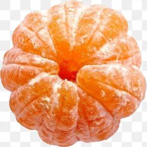 Orange - Fruit Mandarin Orange Tangerine Vegetable PNG
