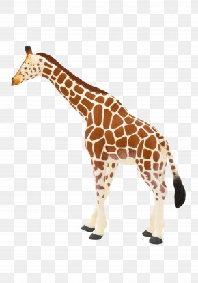 Toy - Toy Northern Giraffe Lion Animal Leopard PNG