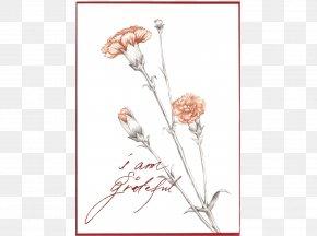 Floral Design Paper Carnation Cut Flowers PNG