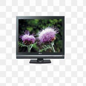 Hisense TV - Television Hisense Home Appliance PNG
