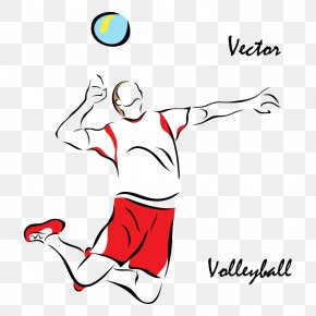 Vector Volleyball Players - Volleyball Sport Euclidean Vector Illustration PNG