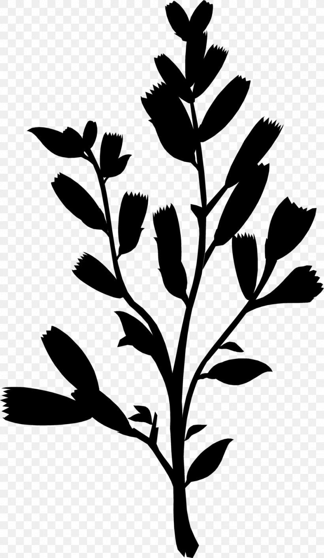 Flower Leaf Plant Stem Clip Art Floral Design, PNG, 958x1651px, Flower, Blackandwhite, Blue, Botany, Branch Download Free