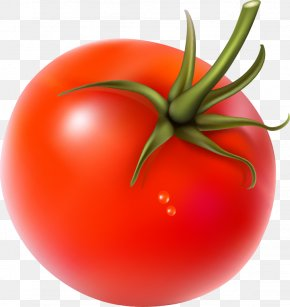 Vegetable - Cherry Tomato Vegetarian Cuisine Vegetable PNG