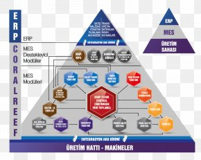 Technology - Manufacturing Execution System Quality Management Business Process PNG