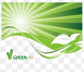 Green Vector Pattern - Environment Stock Photography Illustration PNG